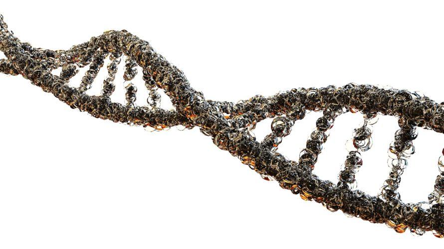 遺伝子の不思議